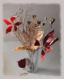 Autumn Bouquet. Of wilted leaves and the plant is attractive for its modest beauty Stock Photos