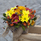 Autumn bouquet of yellow, orange, brown carnations Royalty Free Stock Photos