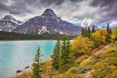 Autumn Bow River nel parco nazionale di Banff Fotografia Stock Libera da Diritti