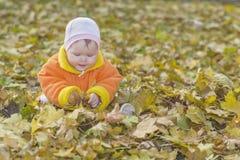 autumn boy leafs lying Стоковая Фотография