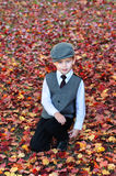 Autumn Boy Royalty Free Stock Photography