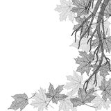 Autumn branch monochrome template Stock Images