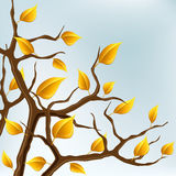 Autumn branch with yellow leaves. With sky in background Stock Photo