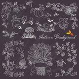 Autumn Branches en Elementen Royalty-vrije Stock Afbeelding
