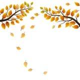 Autumn branches Royalty Free Stock Photos