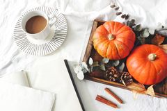 Autumn breakfast in bed composition. Blank card, notebook mockup. Cup of coffee., eucalyptus leaves and pumpkins on. Wooden tray. White linen bed sheet royalty free stock image