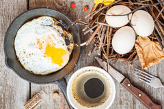 Autumn breakfast in nature Royalty Free Stock Photography