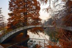 Autumn Bridge Immagine Stock