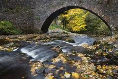Autumn Bridge Photos libres de droits