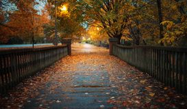 Autumn Bridge foto de stock