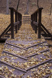 Autumn bridge Stock Photo