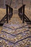 Autumn bridge Stock Photo