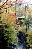 Autumn Bridge Imagens de Stock