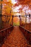Autumn Bridge Stock Afbeeldingen