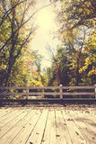 Autumn Bridge Fotografia Stock