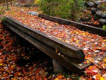 Autumn bridge. A small wooden bridge in autumn Royalty Free Stock Images