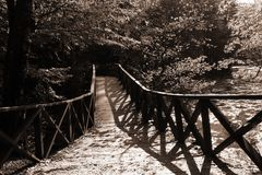 Autumn bridge Royalty Free Stock Photography