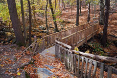Autumn Bridge in forest with creek Royalty Free Stock Photography