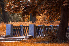 Autumn bridge. Autumn lonely bridge with trees royalty free stock photography