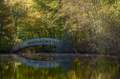 Autumn bridge over a river. Bridge over a river in an autumn forest Stock Images