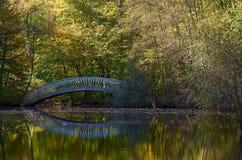 Autumn bridge over a river Stock Images
