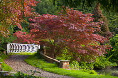Historic Bridge in Autumn path. A winding path leading up to a historic bridge, with beautiful trees in the surrounding Stock Image