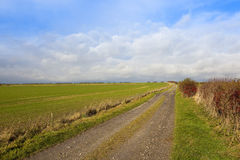 Autumn bridleway Royalty Free Stock Photo