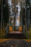 Autumn. Brige after Rain in the Perm City Stock Photography