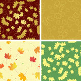 Autumn bright leaves in seamless patterns - vector Stock Photography