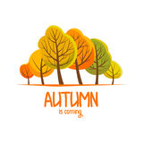 Autumn brochure for your design. Flat illustration. Autumn landscape. Vector illustration Royalty Free Stock Photo