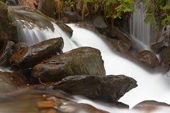 Autumn brook Royalty Free Stock Photos