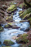 Autumn brook cascade Stock Images