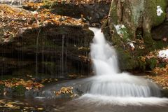Autumn Brook Fall Stock Images