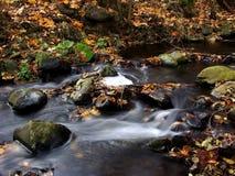 Autumn brook Royalty Free Stock Photo