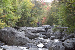 Autumn Brook Hiker crossing. This serene scene is an autumn background Royalty Free Stock Image