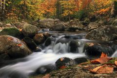 Autumn brook Royalty Free Stock Photography