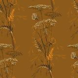 Autumn Brown Seamless Vintage Pattern con las hierbas Imagen de archivo