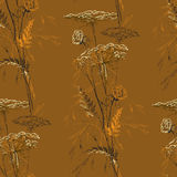 Autumn Brown Seamless Vintage Pattern met Kruiden Stock Afbeelding