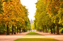 Autumn in Brussels. Parc de Bruxelles or Warandepark, is the largest urban public park in the center of Brussels. The area of the rectangular park is 13.1 ha. It Royalty Free Stock Images