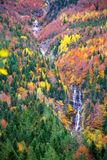 Autumn Bujaruelo Ordesa waterfal in colorful fall forest Huesca Stock Image