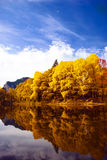 Autumn in Bulgaria stock image