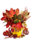 Autumn Bunch Stock Photography