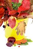 Autumn Bunch image libre de droits