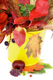 Autumn Bunch Royalty Free Stock Image