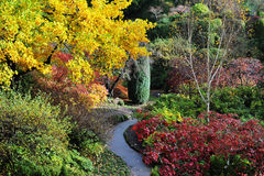 Autumn butchart gardens Royalty Free Stock Images