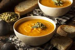 Autumn Butternut Squash Soup caseiro Foto de Stock Royalty Free