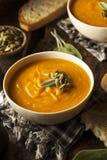 Autumn Butternut Squash Soup fait maison Images libres de droits