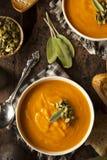Autumn Butternut Squash Soup hecho en casa Imagen de archivo