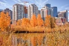 Autumn Calgary Cityscape Stock Image