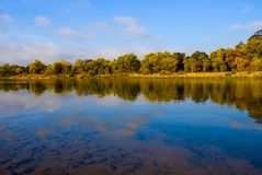 Autumn in California. Reflection in the river Stock Photography